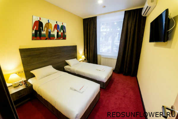 Шкаф с гладильной доской и утюгом гостиничного номера «Стандартдвухместный»