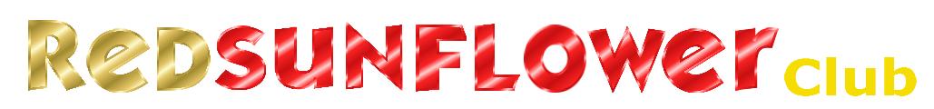 Шапка сайта с логотипом гостиницы Красный Подсолнух